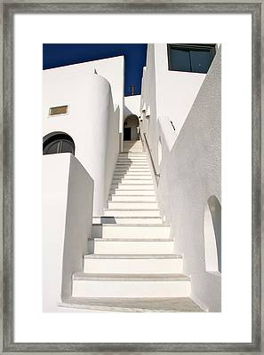 Looking Up Framed Print by John Babis