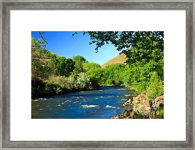 Looking Up Pine Creek Framed Print by Robert Bales