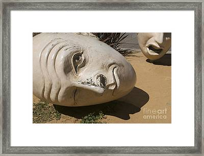 Framed Print featuring the photograph Looking Up by Sherry Davis