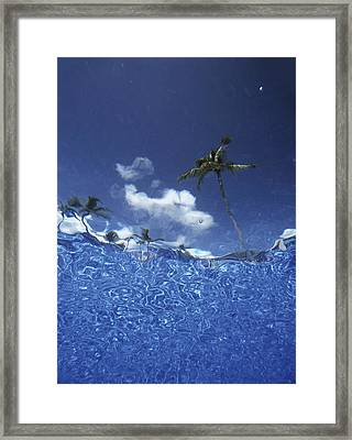 Looking Up Through Swimming Pool �� Framed Print