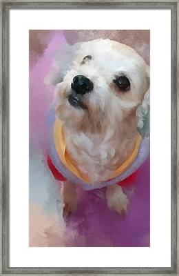 Looking Up To You Framed Print by Tony Chong