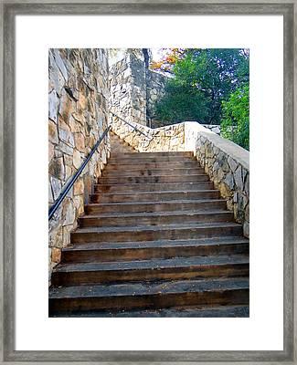 Framed Print featuring the photograph Looking Up by Tom DiFrancesca