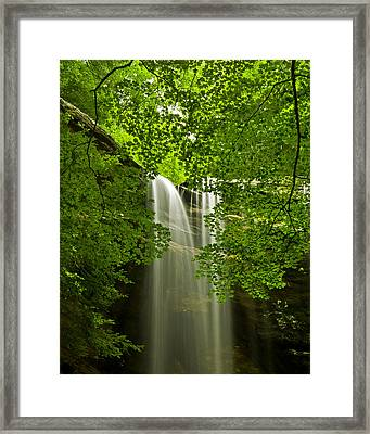 Looking Up..... Framed Print