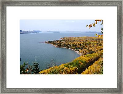 Lookout Framed Print by Sheila Byers