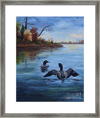 Loon Dance II Framed Print