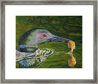 Loon Lunch Framed Print