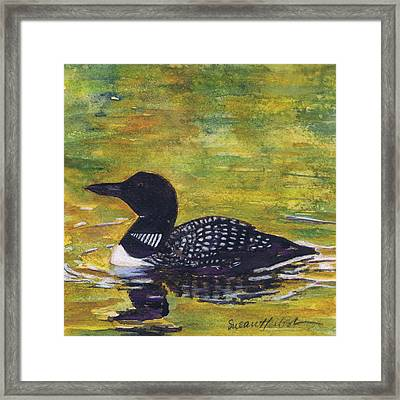 Loon On Jordon Pond Maine Framed Print by Susan Herbst