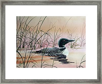 Loon Sunset Framed Print by James Williamson