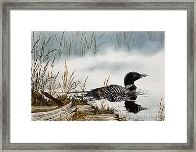 Loons Misty Shore Framed Print by James Williamson