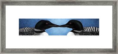 Loons Framed Print by Pat Erickson