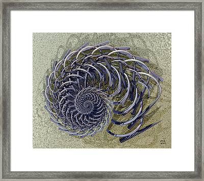 Loops And Augers Framed Print