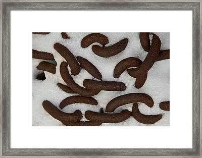 Loose Ends Framed Print by Odd Jeppesen