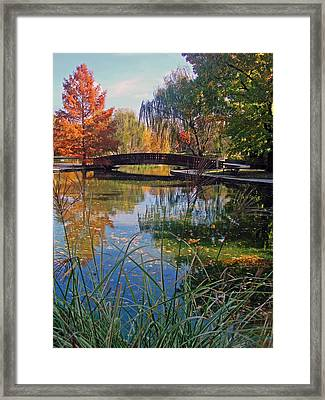 Loose Park In Autumn Framed Print