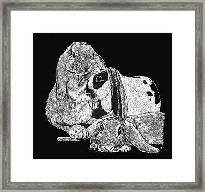 Lop Bunny Trio Framed Print by Jeanie Beline