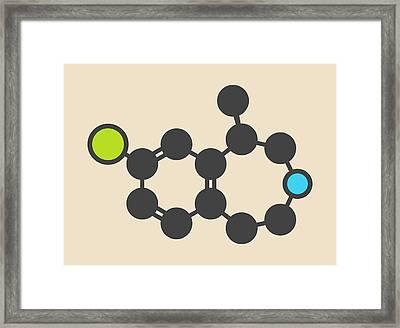 Lorcaserin Obesity Drug Molecule Framed Print by Molekuul