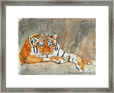 Lord Of The Jungle Framed Print