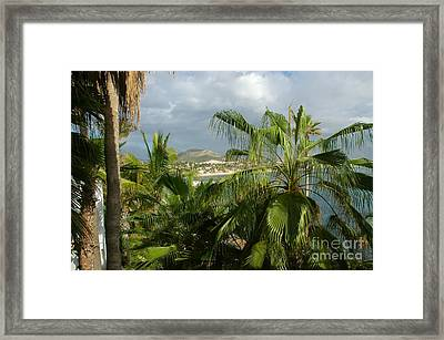 Los Cabos Framed Print by M West