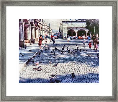 Los Palomitos Framed Print