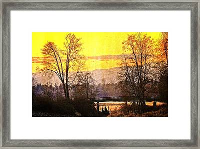 Lost Along The River Framed Print by Eti Reid
