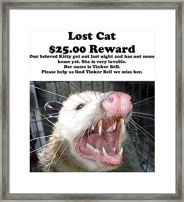 Lost Cat Cash Reward Framed Print
