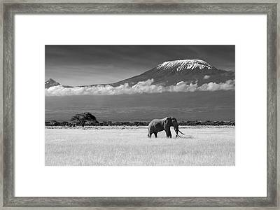 Lost Colors II Framed Print