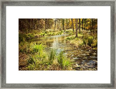 Lost Creek In Autumn Morning Framed Print