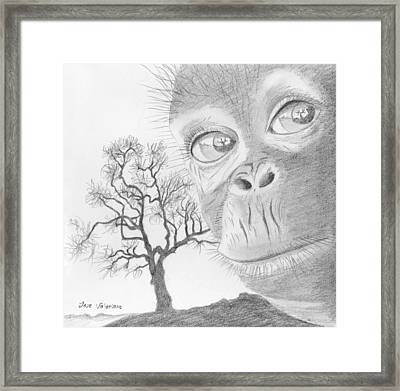 Lost Home Framed Print by M Valeriano