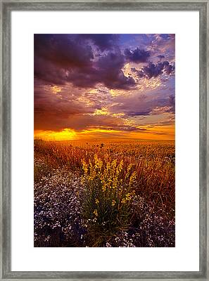 Lost In A Dream Framed Print