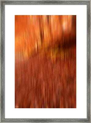 Lost In Autumn Framed Print by Lourry Legarde