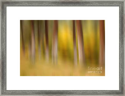 Lost In Autumn Framed Print by Beve Brown-Clark Photography