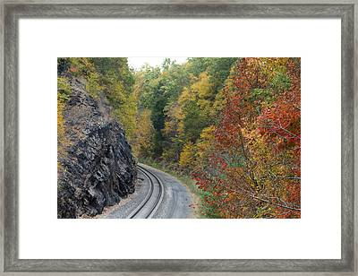 Lost In Colors Framed Print