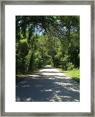 Lost In Marion County Florida Framed Print