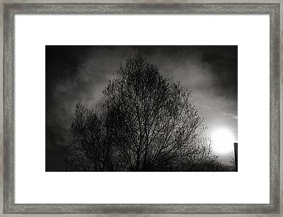 Lost In Moments Framed Print by Taylan Apukovska