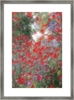Lost In Paradise Framed Print by The Art Of Marilyn Ridoutt-Greene