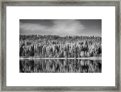 Lost In Reflection Framed Print by Laurie Search