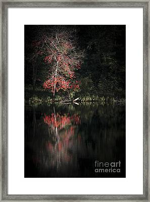 Lost In The Autumn Of Eternity Framed Print by Evelina Kremsdorf