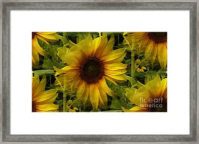 Lost In The Crowd Framed Print