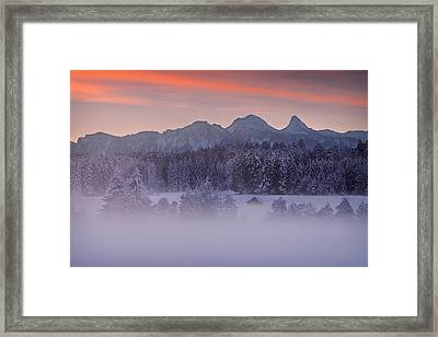 Lost In The Mist Framed Print