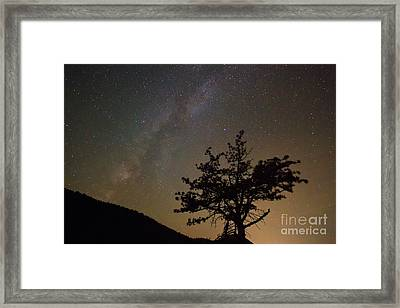 Lost In The Night Framed Print by James BO  Insogna