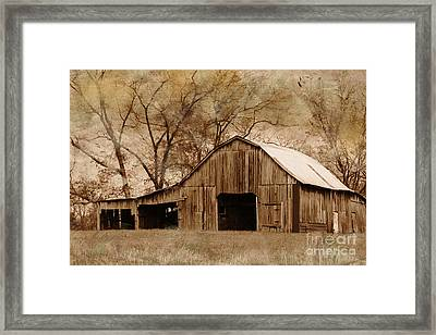 Lost In The Past Framed Print by Betty LaRue