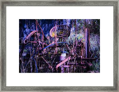 Lost In The Weeds Framed Print by Garry Gay