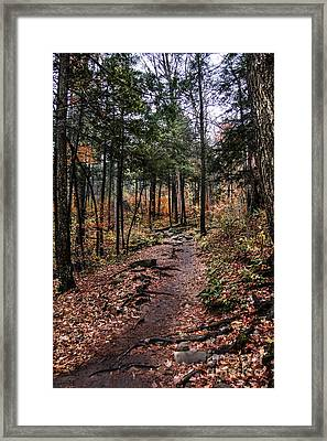 Framed Print featuring the photograph Lost In Thought On The Blue Ridge Parkway Trail by Debbie Green