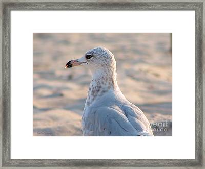 Lost In Thought Framed Print by Roxy Riou