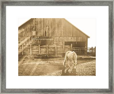 Lost In Time And Space Framed Print by Eti Reid