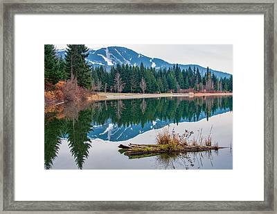 Lost Lake Log Framed Print