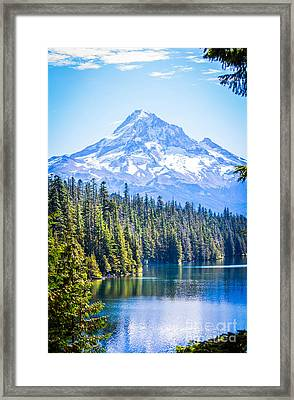 Lost Lake Morning Framed Print by Patricia Babbitt
