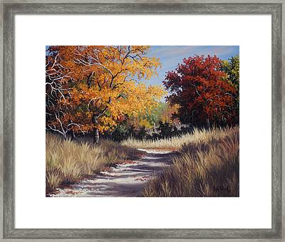 Lost Maples Trail Framed Print by Kyle Wood