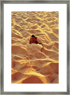 Framed Print featuring the photograph Lost by Marwan Khoury
