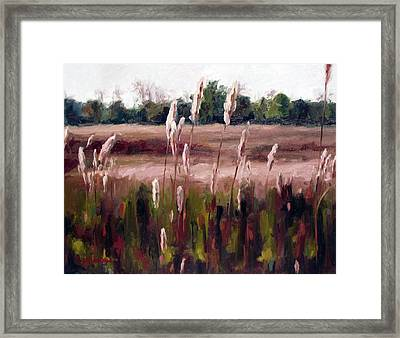 Lost On The Trail At Chickasaw Meadow Framed Print by Erin Rickelton