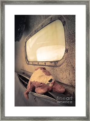 Lost Puppy Framed Print